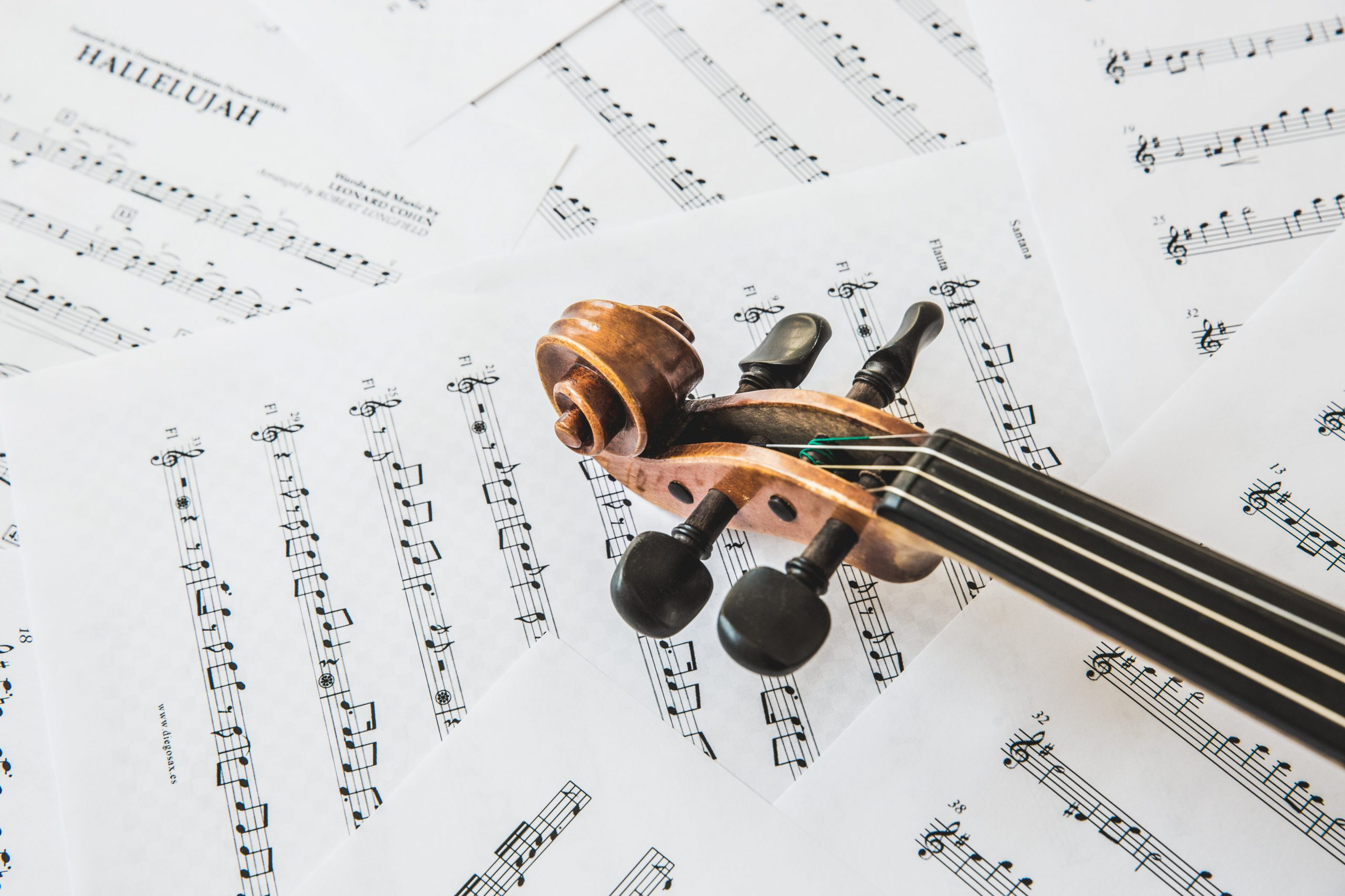 top-of-violin-on-music-sheets